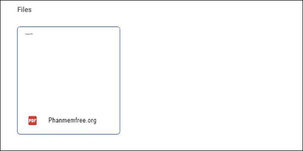 File PDF Google Drive