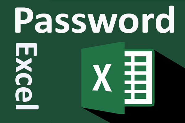 password excel